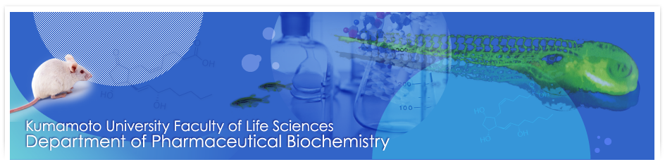 Kumamoto University Faculty of Life Sciences Department of Pharmaceutical Biochemistry