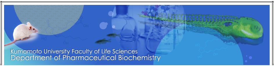 Kumamoto University Faculty of Life Sciences Department of Pharmaceutical Biochemistry