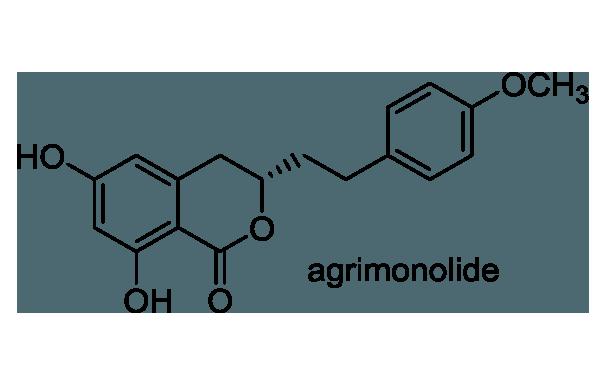 キンミズヒキ 化学構造式1
