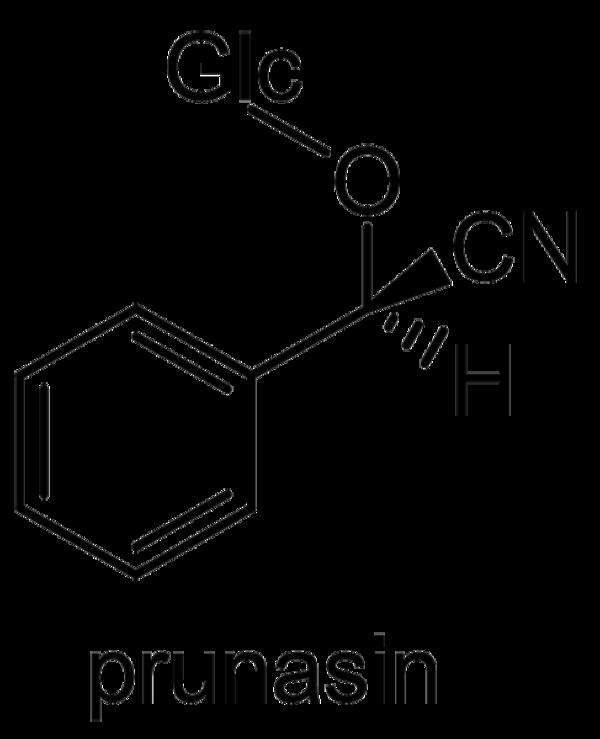 モモ 化学構造式2