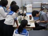 宇土高等学校SSH課題研究実験指導
