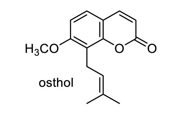 ウド 化学構造式1