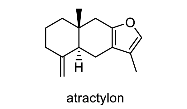 オオオバナオケラ 化学構造式1