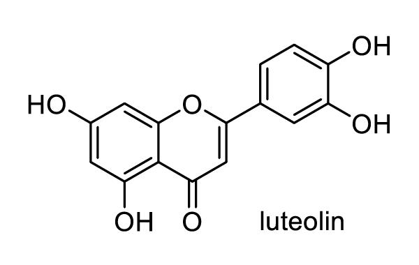 キク 化学構造式1