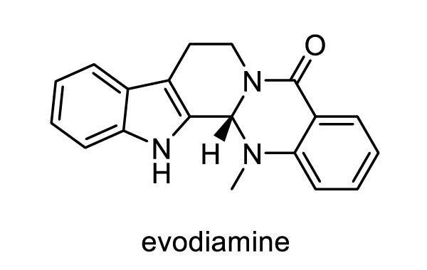 ゴシュユ 化学構造式1
