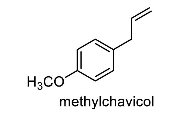 コブシ 化学構造式1