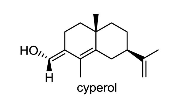 ハマスゲ 化学構造式1