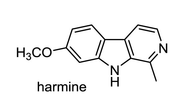 ハマビシ 化学構造式1