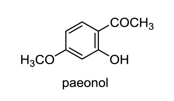 ボタン 化学構造式1