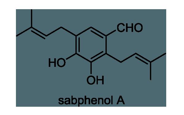 アオカズラ 化学構造式1