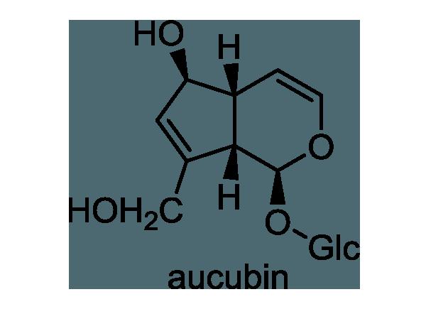 アオキ 化学構造式1