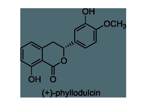 アマチャ 化学構造式1