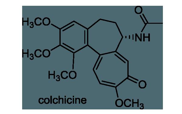イヌサフラン 化学構造式1