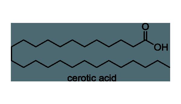 イボタノキ 化学構造式1