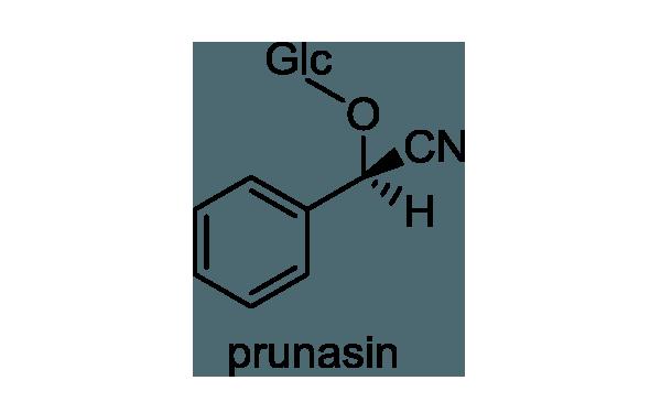 ウワミズザクラ 化学構造式1