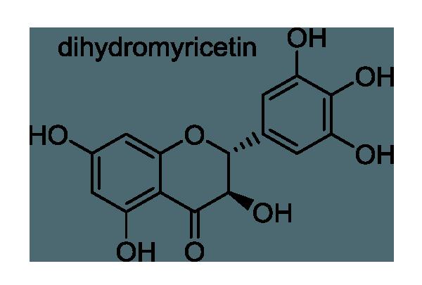 エビヅル 化学構造式1