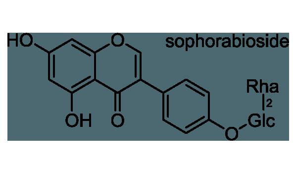 カギクルマバナルコユリ 化学構造式1