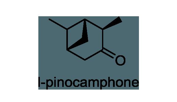 カキドオシ 化学構造式1
