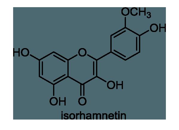 ガマ 化学構造式1