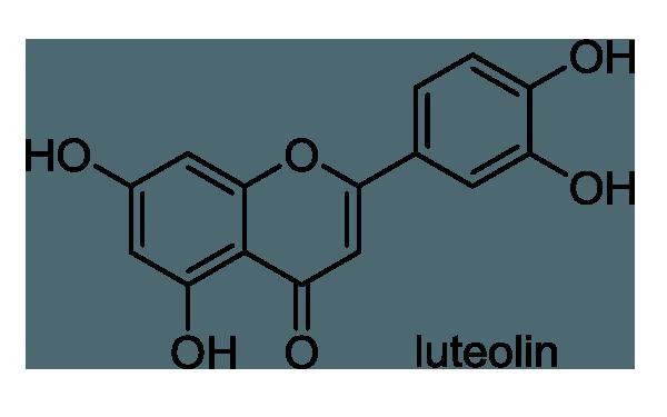 キランソウ 化学構造式1
