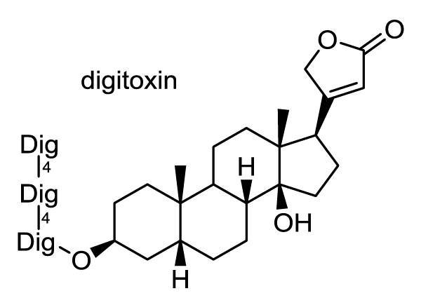 ジギタリス 化学構造式1