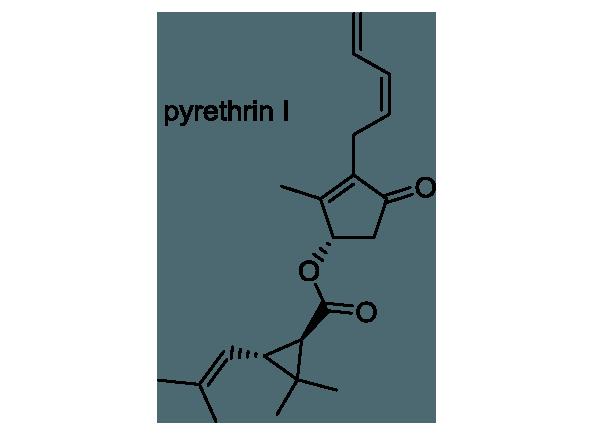 シロバナムシヨケギク 化学構造式1