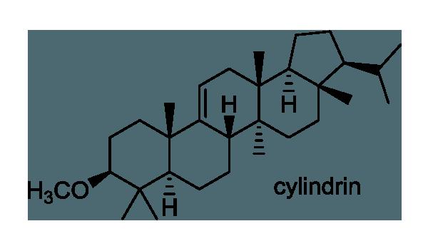 チガヤ 化学構造式1
