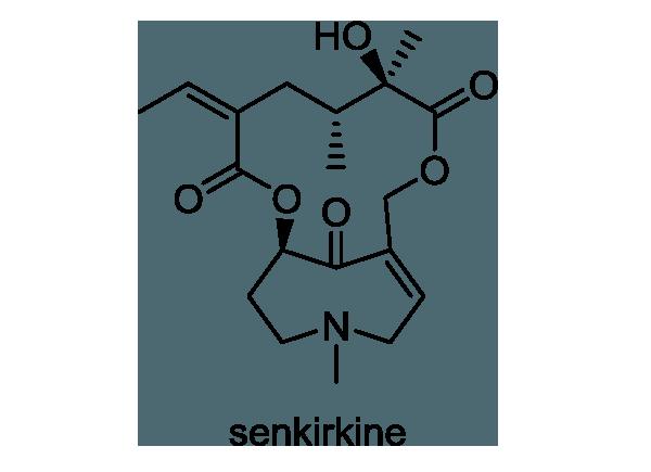 ツワブキ 化学構造式1