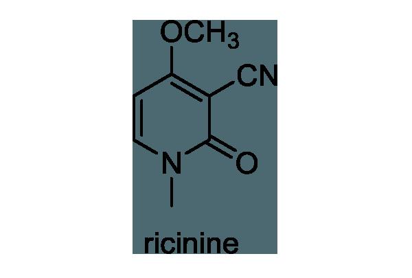 トウゴマ 化学構造式1