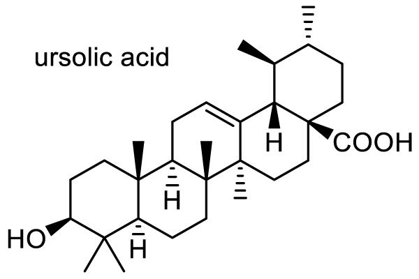 トウネズミモチ 化学構造式1