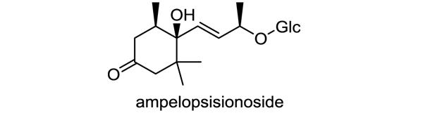 トキワマンサク 化学構造式1