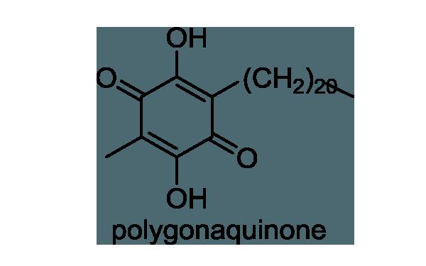 ナルコユリ 化学構造式1