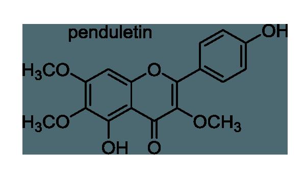 ニンジンボク 化学構造式1