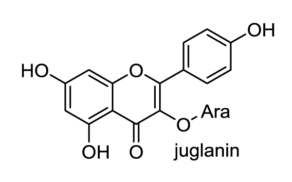 ノブドウ 化学構造式1