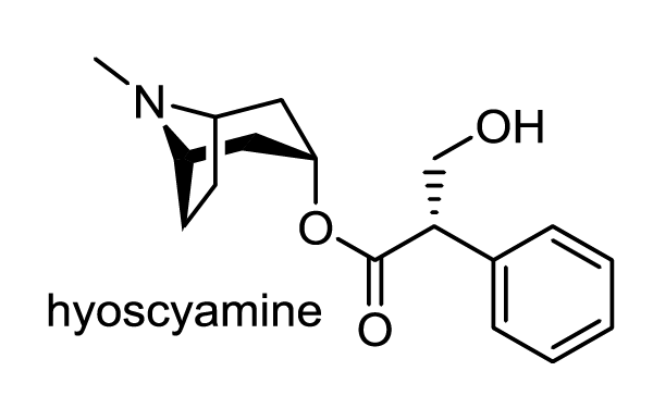 ハシリドコロ 化学構造式1
