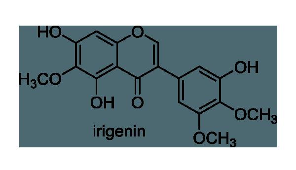 ヒオウギ 化学構造式1