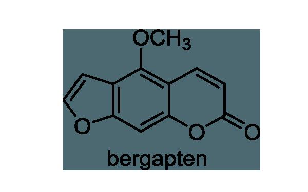 ボタンボウフウ 化学構造式1