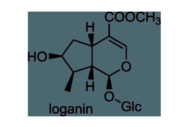 ミツガシワ 化学構造式1