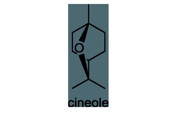 ロウバイ 化学構造式1