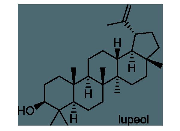 アキグミ 化学構造式1