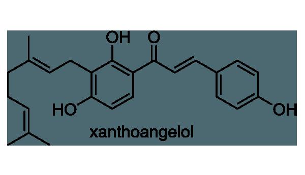アシタバ 化学構造式1