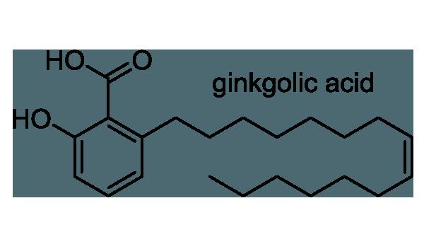 イチョウ 化学構造式1