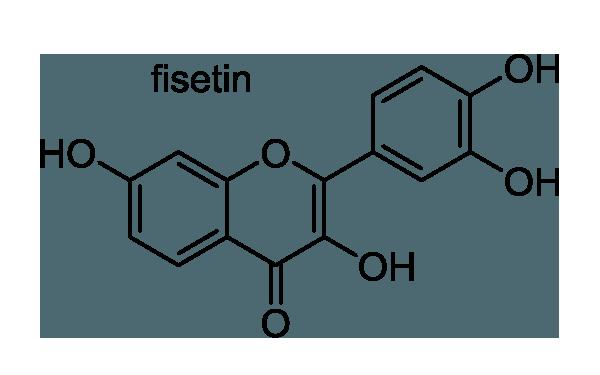 イヌクログワイ 化学構造式1