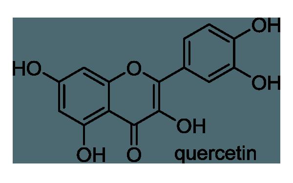 ウラジロガシ 化学構造式1