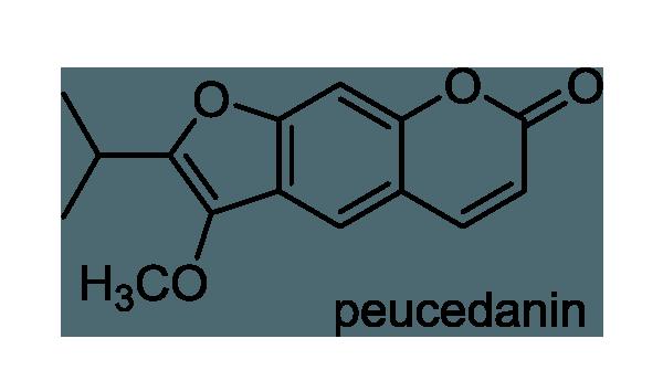 エゾミソハギ 化学構造式1