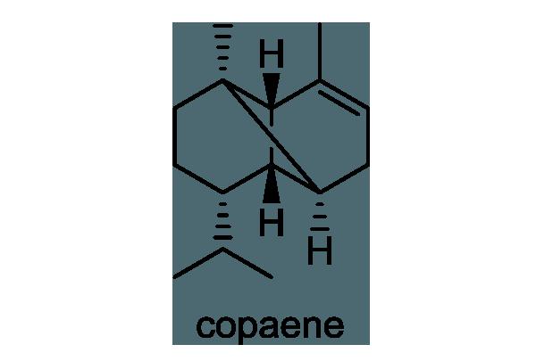 オトコヨモギ 化学構造式1