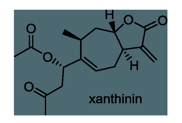オナモミ 化学構造式1