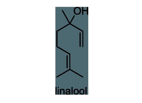 カラタネオガタマ 化学構造式1