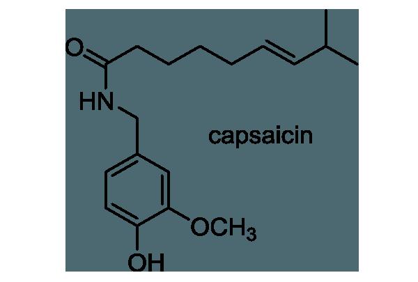 キダチトウガラシ 化学構造式1