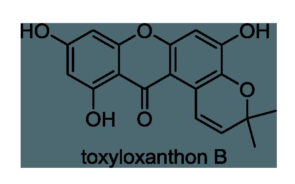 キンシバイ 化学構造式1
